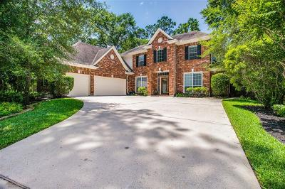 The Woodlands Single Family Home For Sale: 58 S Terrace Mill Circle