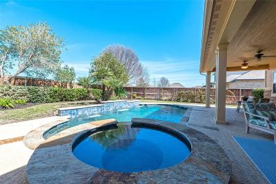 Katy Single Family Home For Sale: 26218 Wooded Hollow Lane