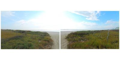 Galveston Residential Lots & Land For Sale: 3811 Periwinkle Street