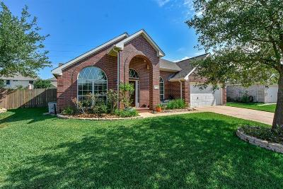 Tomball Single Family Home For Sale: 18243 Rustic Springs Drive