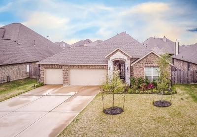League City Single Family Home For Sale: 1320 Elkins Hollow Lane
