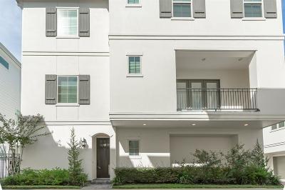 Houston Single Family Home For Sale: 16 Hermann Park Court