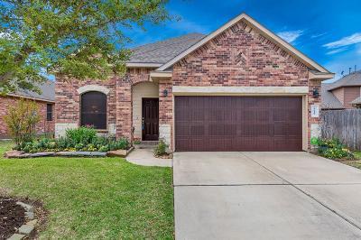 Cypress Single Family Home For Sale: 8619 Austin Thomas Drive