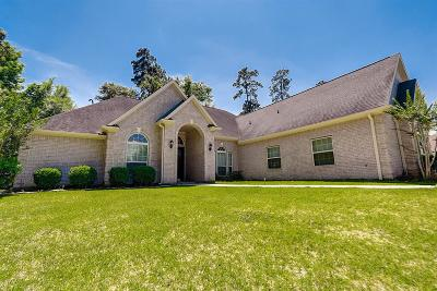 Spring Single Family Home For Sale: 4226 Hidden Winds Drive