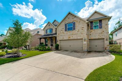 The Woodlands Single Family Home For Sale: 15 Langstone Place