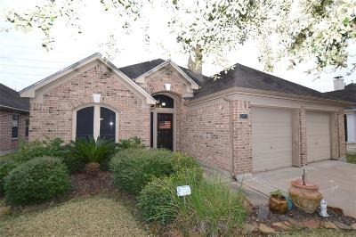 Fort Bend County Single Family Home For Sale: 25715 Oakstone Park Drive