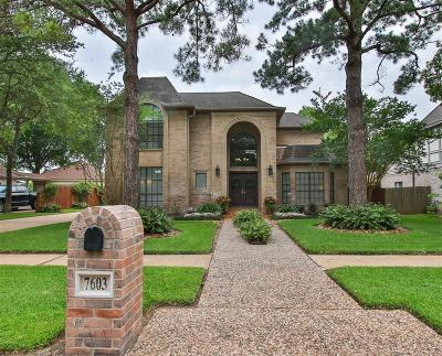 Houston Single Family Home For Sale: 7603 Club Lake Drive