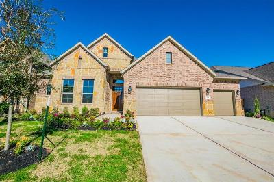 Tomball Single Family Home For Sale: 8830 Havenfield Ridge Lane