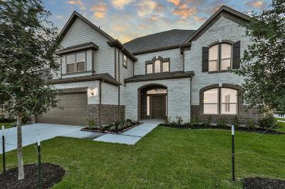 Houston Single Family Home For Sale: 15527 Westward Lake Lane