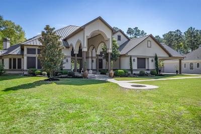 Porter Single Family Home For Sale: 22961 Brazos Drive