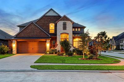 Conroe Single Family Home For Sale: 200 Dove Meadow Dr