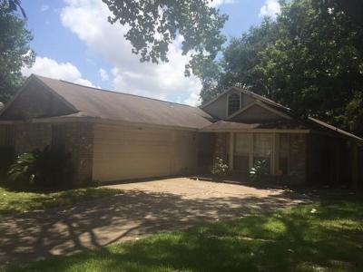 Houston Single Family Home For Sale: 15915 Sierra Vista Drive