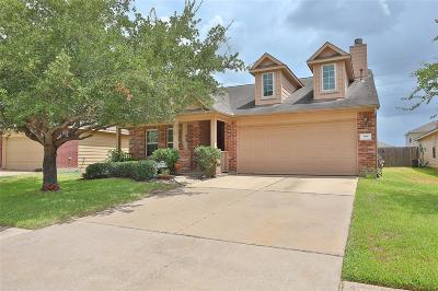 Katy Single Family Home For Sale: 4106 Mt Everest Way