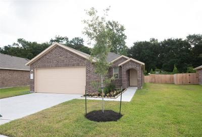 Tomball Single Family Home For Sale: 23822 Bluewood Trace
