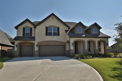 Tomball Single Family Home For Sale: 18702 Hardy Trace Drive