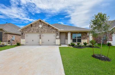 Dickinson Single Family Home For Sale: 3119 Zachary Bay Lane