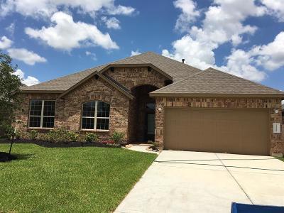 Katy Single Family Home For Sale: 23530 Mantova River Drive