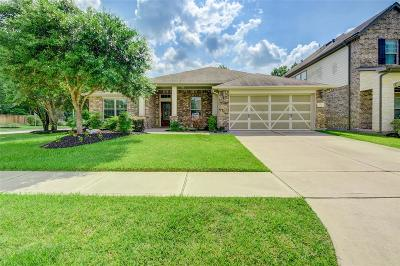 Houston Single Family Home For Sale: 4430 Pine Hollow Trace
