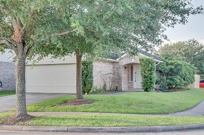 Galveston County, Harris County Single Family Home For Sale: 8702 Black Cliff Lane