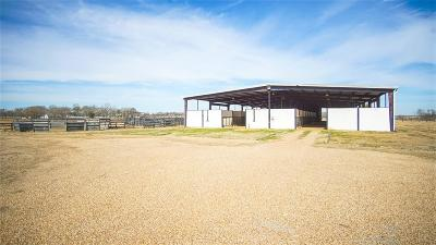 Waller Farm & Ranch For Sale: 26736 Fm 1736 Road