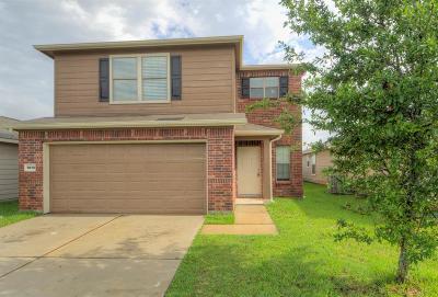 Houston Single Family Home For Sale: 1814 Howth Avenue Avenue