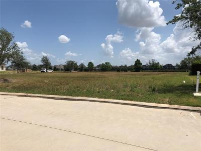 Katy Residential Lots & Land For Sale: 7311 Palmetto Springs Trail W