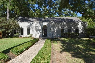 Houston Single Family Home For Sale: 407 Briarpark Drive