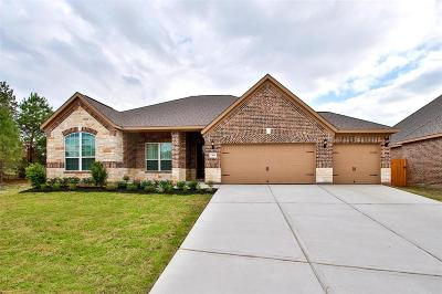 Conroe Single Family Home For Sale: 7569 Tyler Run Boulevard