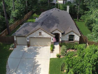 Willis Single Family Home For Sale: 9009 S Comanche Circle