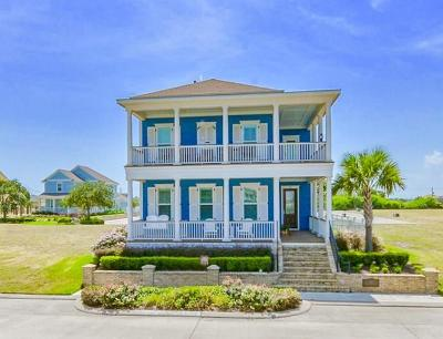Galveston Single Family Home For Sale: 12 Porch Street