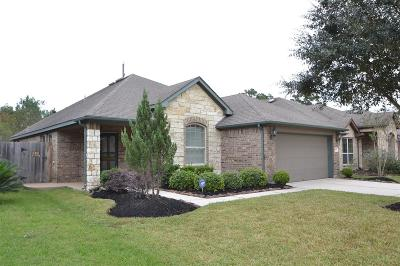 Houston Single Family Home For Sale: 12527 Bridle Springs Lane