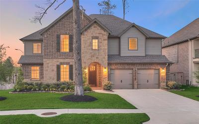 Tomball Single Family Home For Sale: 13434 Tumbling River Lane
