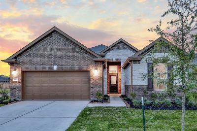 Houston Single Family Home For Sale: 15423 Rosehill Summit Lane