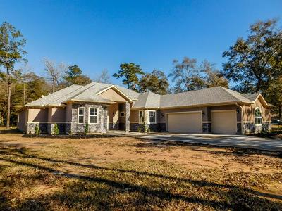 Porter Single Family Home For Sale: 19495 Humaya