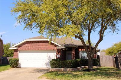 Katy Single Family Home For Sale: 19818 Imperial Colony Lane
