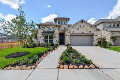 Missouri City Single Family Home For Sale: 10115 Tribeca Trail
