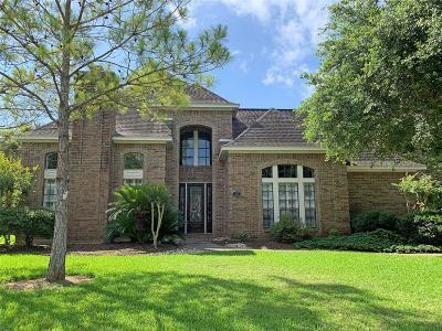 Lake Jackson Single Family Home For Sale: 223 Dewberry Drive