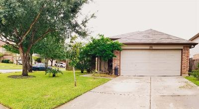 Tomball Single Family Home For Sale: 19703 Waterflower Drive