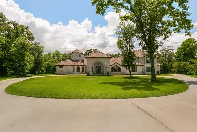 Spring Single Family Home For Sale: 4639 Silver Jade Drive