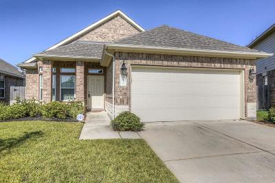Tomball Single Family Home For Sale: 18310 Eli Cove Lane