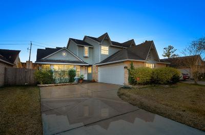 Houston Single Family Home For Sale: 12735 Ashford Knoll Drive