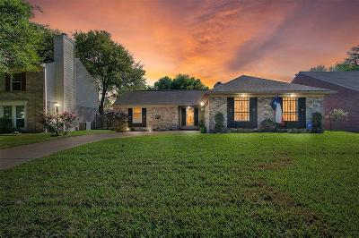 Houston Single Family Home For Sale: 18015 Holly Forest Drive