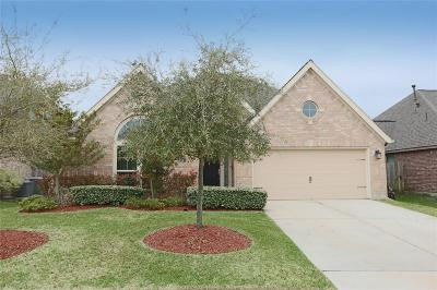 Pearland Single Family Home For Sale: 2419 Lost Bridge Lane W