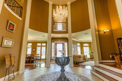 Sugar Land Single Family Home For Sale: 1603 Whitfield Street