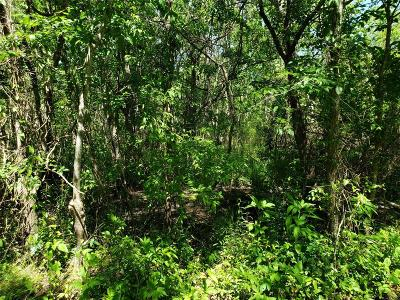 Brazoria Residential Lots & Land For Sale: Lot 84 Ash Drive