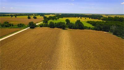 Farm & Ranch For Sale: Cr 263