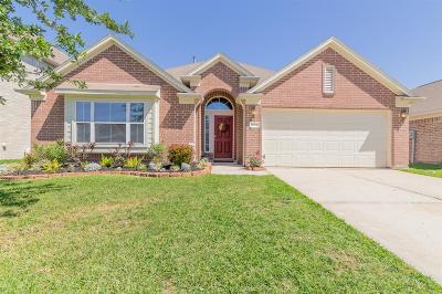 Conroe Single Family Home For Sale: 9923 Yearling Place