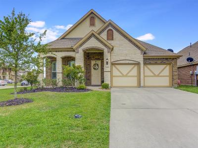 League City Single Family Home For Sale: 3014 Brandy Branch Court
