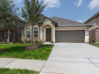 Cypress Single Family Home For Sale: 8815 Chapada Highlands Drive