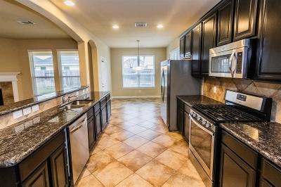 Katy Single Family Home For Sale: 1234 S Maple Drive
